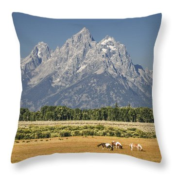 #5687 - Wyoming Throw Pillow