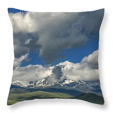 #5773 - Southwest Montana Throw Pillow