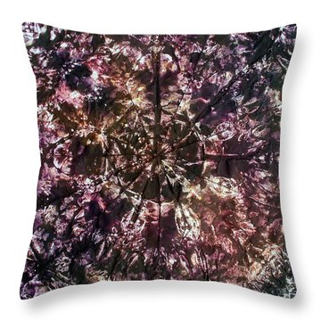 58-offspring While I Was On The Path To Perfection 58 Throw Pillow