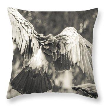 Arizona Renaissance Festival Throw Pillows