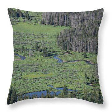 Scenery Rocky Mountain Np Co Throw Pillow