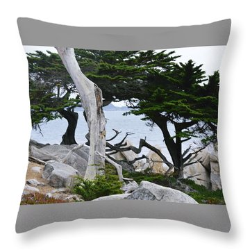 17- Mile Drive Throw Pillow