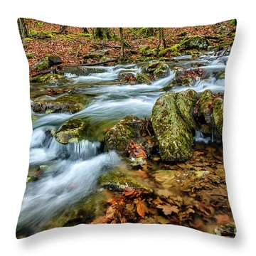 Throw Pillow featuring the photograph Aldrich Branch Monongahela National Forest by Thomas R Fletcher