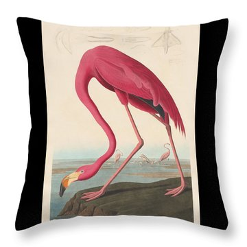 American Flamingo Throw Pillow