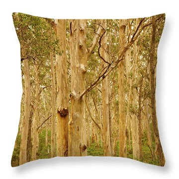 Boranup Forest II Throw Pillow