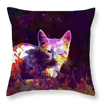 Throw Pillow featuring the digital art Cat Eye Injury One Eye Village  by PixBreak Art