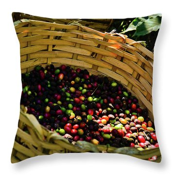 Coffee Culture In Sao Paulo - Brazil Throw Pillow