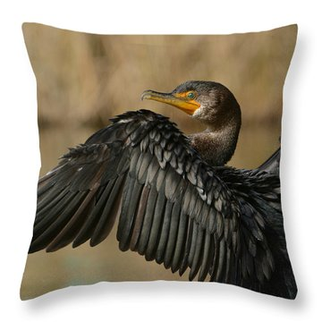 Drying Out Throw Pillow by Fraida Gutovich