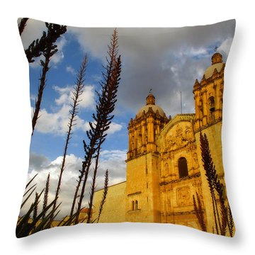 Oaxaca Mexico Throw Pillow