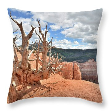 Throw Pillow featuring the photograph On The Edge by Ray Mathis