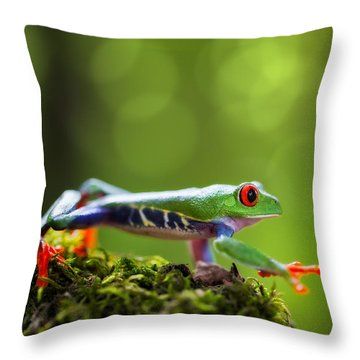 red eyed tree frog Costa Rica Throw Pillow
