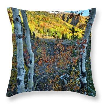 Red Mountain Pass Throw Pillow