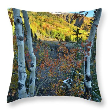 Red Mountain Pass Throw Pillow