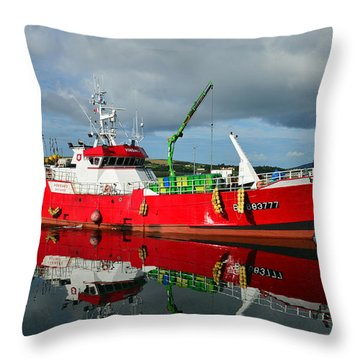 Throw Pillow featuring the photograph Reflections by Barbara Walsh