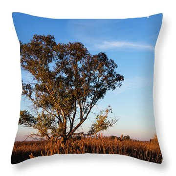 Sunrise In The Ditch Burlamacca Throw Pillow