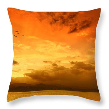 Sunset  Throw Pillow by Charuhas Images