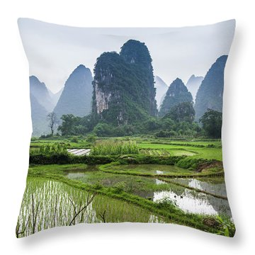 Throw Pillow featuring the photograph The Beautiful Karst Rural Scenery In Spring by Carl Ning