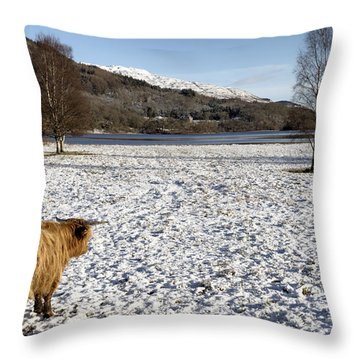 Trossachs Scenery In Scotland Throw Pillow by Jeremy Lavender Photography