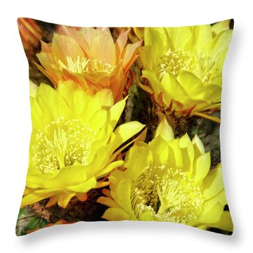 Yellow Cactus Flowers Throw Pillow by Jim And Emily Bush