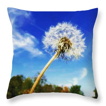 A  Fragile Flower On A Sunny Day Throw Pillow