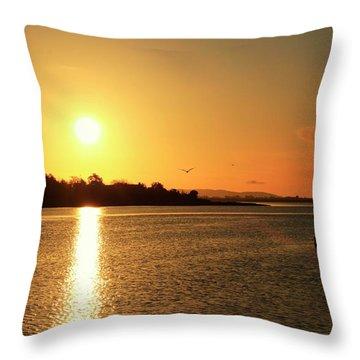 6.25am Throw Pillow by Martina Fagan