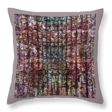 63-offspring While I Was On The Path To Perfection 63 Throw Pillow