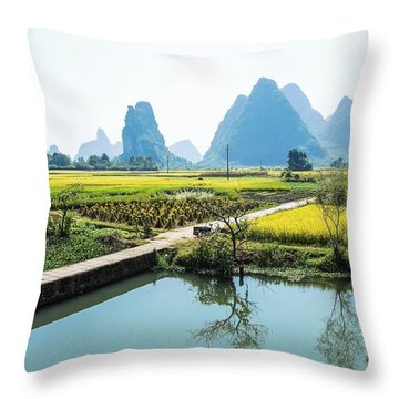 Throw Pillow featuring the photograph Rice Fields Scenery In Autumn by Carl Ning