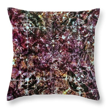 67-offspring While I Was On The Path To Perfection 67 Throw Pillow