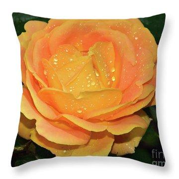 Beautiful Rose Throw Pillow by Elvira Ladocki