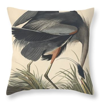 Great Blue Heron Throw Pillow by Rob Dreyer