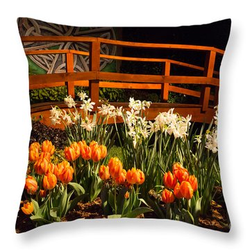 Imaginative Landscape Design Throw Pillow
