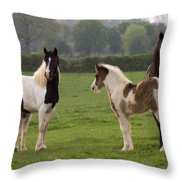 Irish Cobs Throw Pillow by Angel  Tarantella