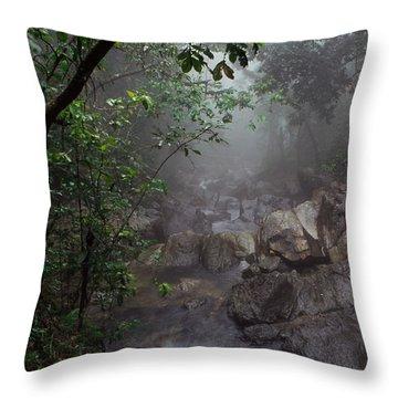Misty Rainforest El Yunque Throw Pillow