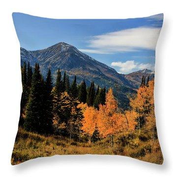 Rocky Mountain Fall Throw Pillow