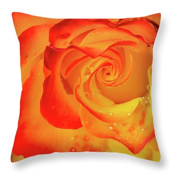 Rose Beauty Throw Pillow