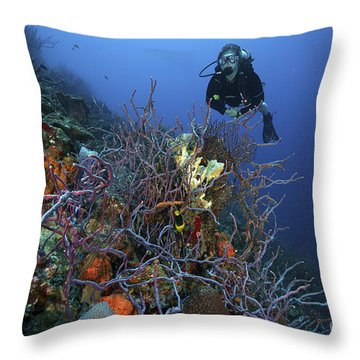 Scuba Diver Swims Underwater Amongst Throw Pillow