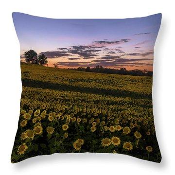 Sunflower Sunset Throw Pillow
