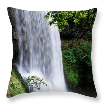 View Of Oregon Throw Pillow by Greg Vaughn - Printscapes
