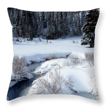 Wasatch Mountains In Winter Throw Pillow