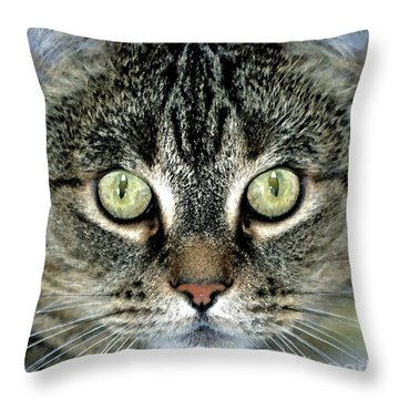 Throw Pillow featuring the photograph Yin by Juls Adams