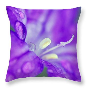 746 Throw Pillow
