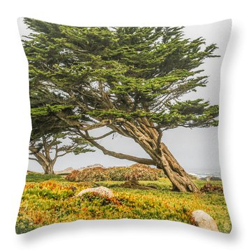 #7803 - Monterey, California Throw Pillow