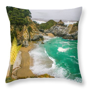 #7842 - Big Sur, California Throw Pillow