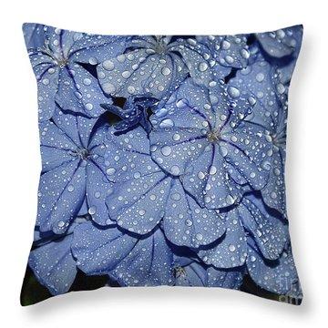 Blue Plumbago Throw Pillow by Elvira Ladocki