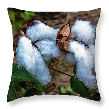 8 Bolls Of Cotton  Throw Pillow