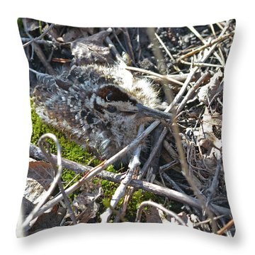 8 Days Old American Woodcock Chick Throw Pillow