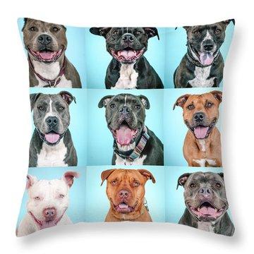 Pit Bulls Throw Pillow