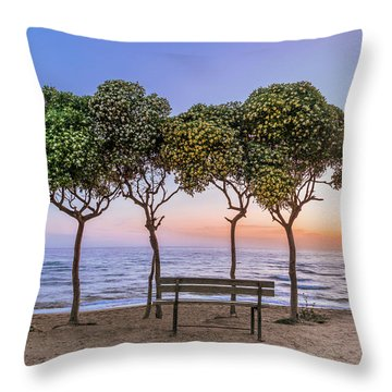// Throw Pillow