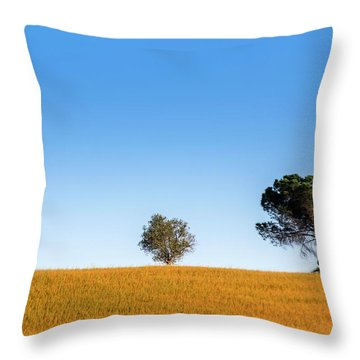 Val D'orcia Landscape Throw Pillow