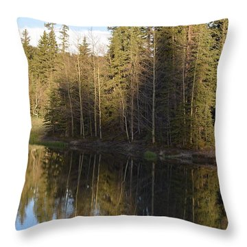 Shadow Reflection Kiddie Pond Divide Co Throw Pillow